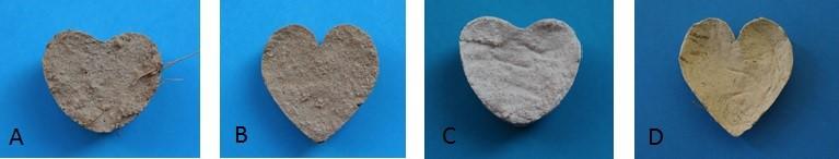 Obrázek 1: Vyrobené vzorky, které byly sušeny vlaboratorních podmínkách A – Hrubá sřezankou, B – Jemná Econom, C – Antik bílá, D – žlutá Cottage